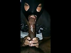 DC - Pretty Mushroom Head, Suck and Swallow
